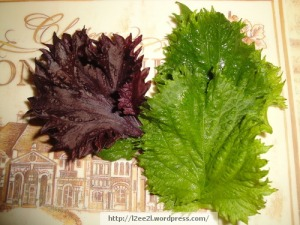 Green and Red Shiso