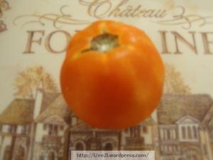 The Tomato