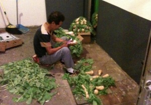 Cleaning Turnips