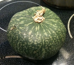 Kabocha, Danhobak, or Winter Squash