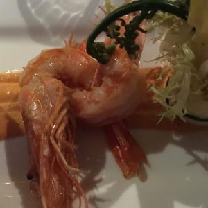 Kauai Shrimp Salad