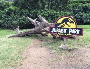 """""""Jurassic Tree"""""""
