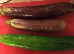 Eggplant, Cucumber