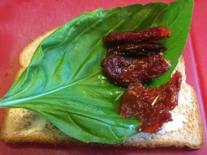 High Fiber Bread, Basil Leaf (from the neighbor), and Sun-Dried Tomatoes (from Costco)