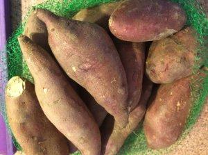 Mini Sweet Potato