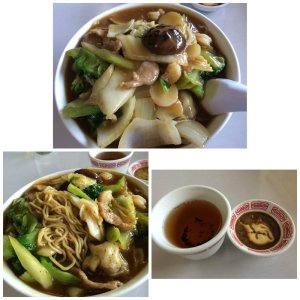 Soft Won ton Mein with Vegetables in Gravy