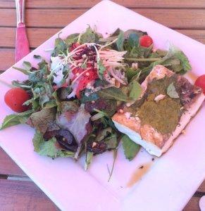 The Cat's Shrimp Salad