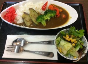 Vegetable Curry Rice, Side Salad